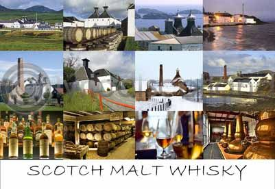 Scotch Whisky Postcard Greeting Card