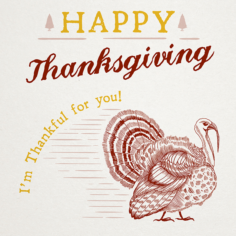 Im Thankful For You Greeting Card