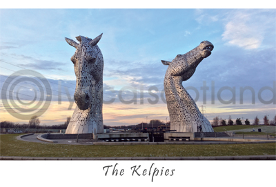 Kelpies Daytime Postcard Greeting Card