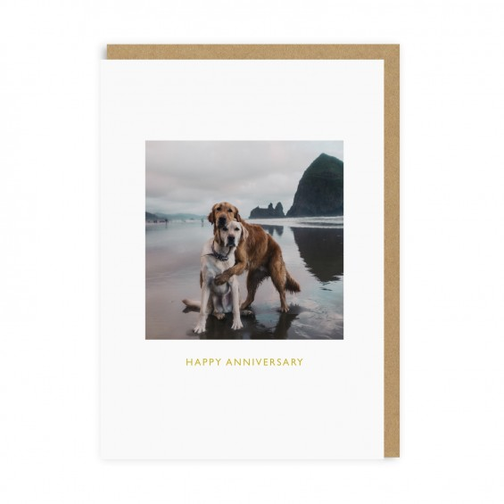 Beach Dogs Anniversary Greeting Card