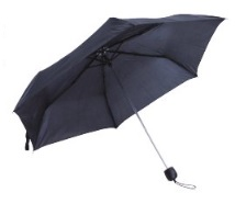 Basic Black Umbrella - Penny Black