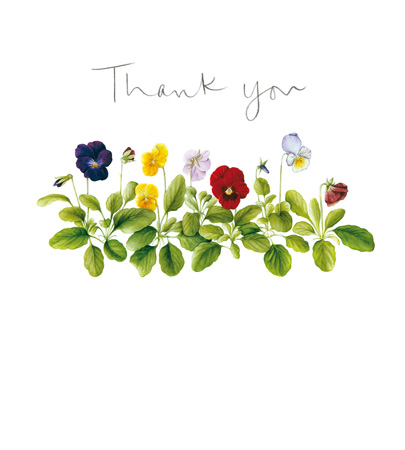 Thank You Pansies Greeting Card