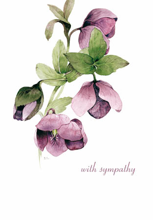 Hellebore With Sympathy Greeting Card