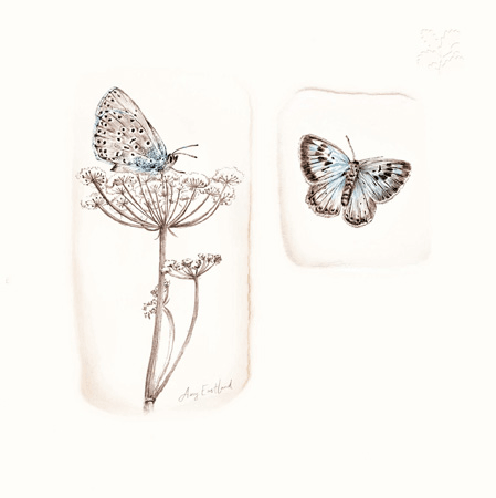 LARGE BLUE BUTTERFLIES Greeting Card