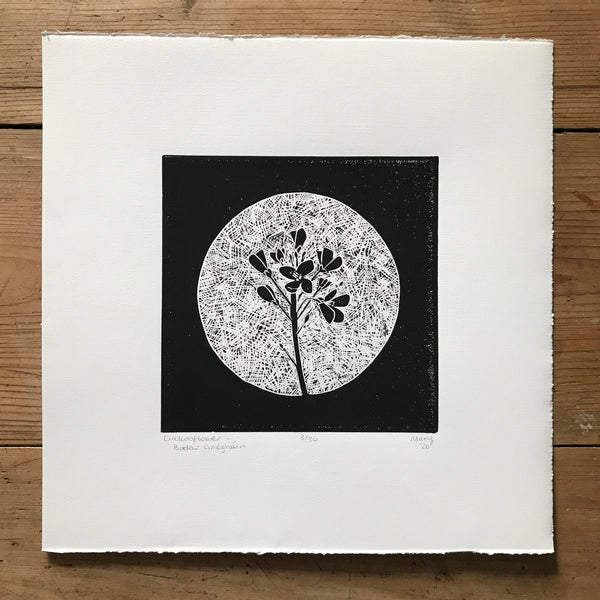 Cuckooflower (Biolar Gréagháin) Irish Wildflower Lino Cut Print | Original Handmade & Limited Edition by Mary Callaghan