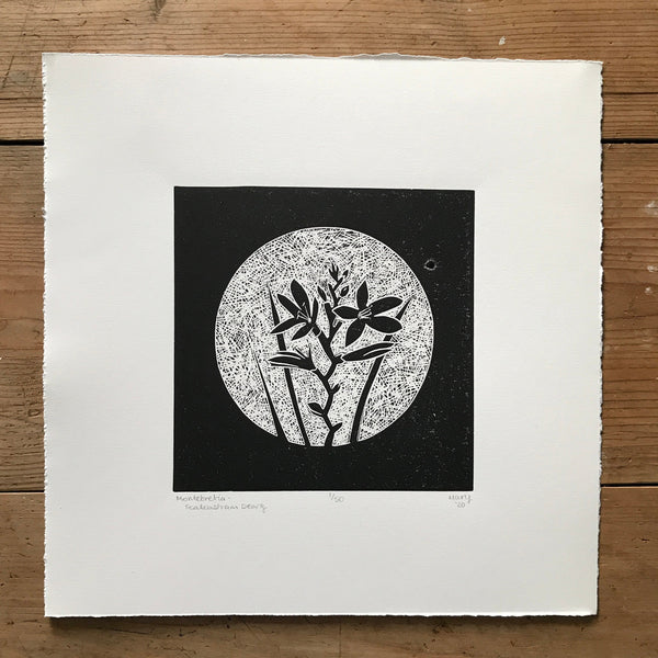 Montebretia (Fealeastram Dearg) Irish Wildflower Lino Cut Print | Original Handmade & Limited Edition by Mary Callaghan