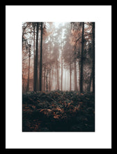Load image into Gallery viewer, And into the forest I go