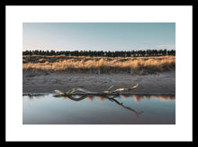 Load image into Gallery viewer, Driftwood at Tentsmuir Beach