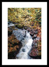 Load image into Gallery viewer, The Birks of Aberfeldy