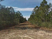 Load image into Gallery viewer, 1.25 Acres in Flagler County FL for $199 a month