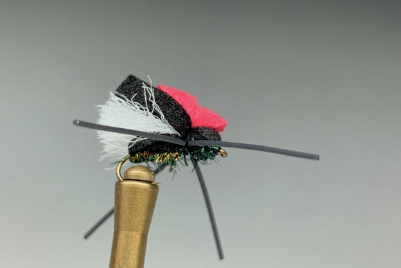 FAB 4 BEETLE (PEACOCK GEORGE)