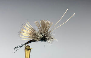 MOHAWK CADDIS (BLACK)