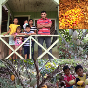 Inside Look at Indigenous Cacao Farmers in Costa Rica