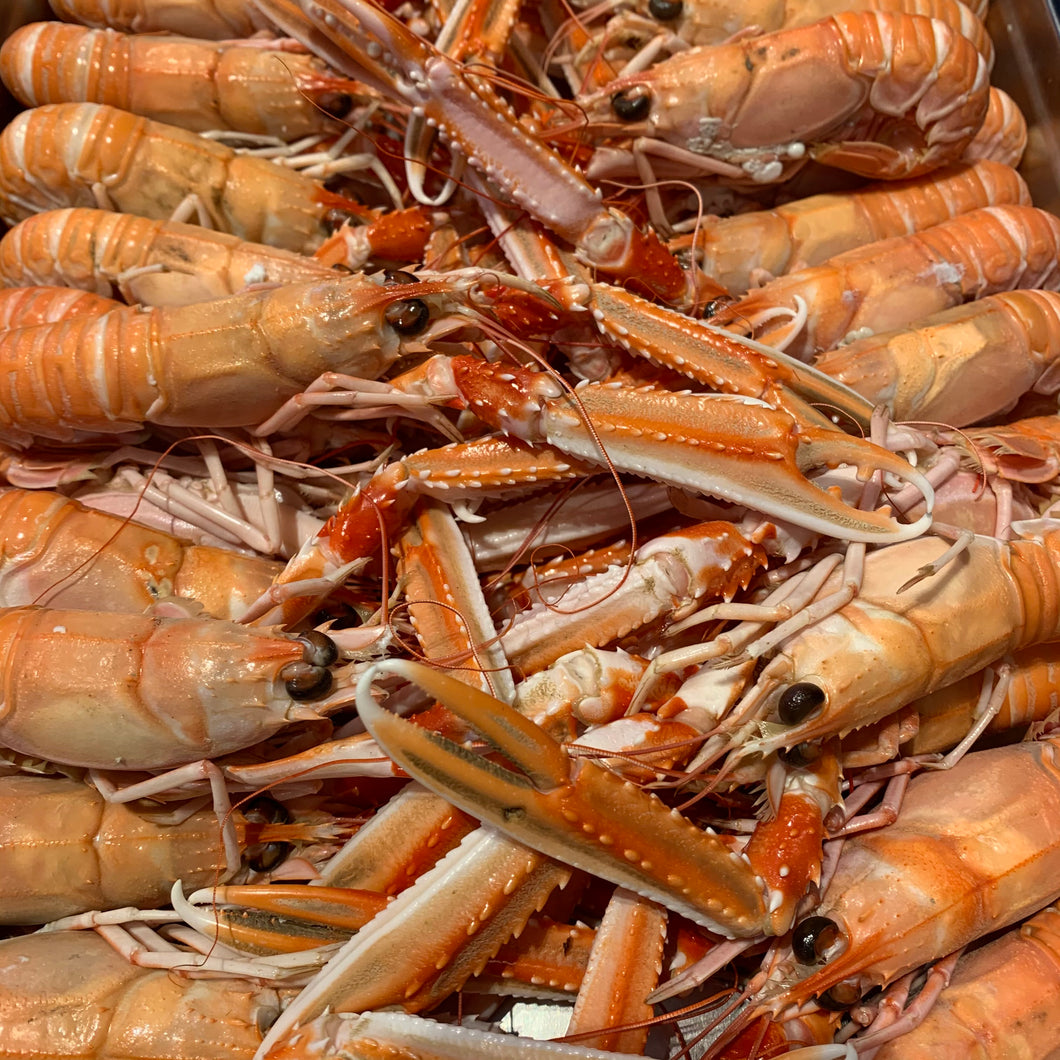 Langoustines (cooked)