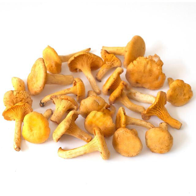 Wild Girolles mushrooms (100gm)