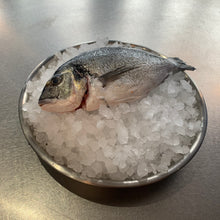 Load image into Gallery viewer, Gilthead Bream (500gm)