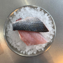 Load image into Gallery viewer, Grey mullet