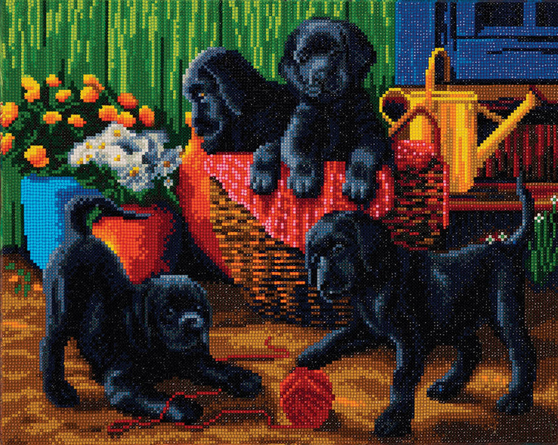 "Toile montée (16x20"") diamond painting - Black Labrador Pups"