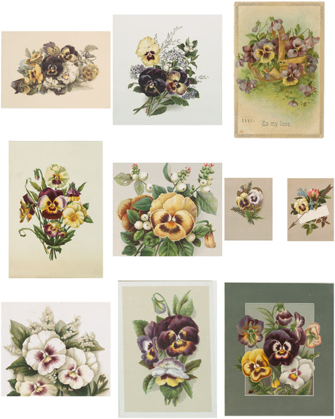 Antique Pansy Collection Digital Designer Kit