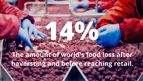 14% of world's food is loss after harvesting and before reaching retail through on-farm activities, storage and transportation
