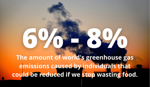 6% - 8% the amount of world's greenhouse gas emissions caused by individuals that could be reduced if we stop wasting food