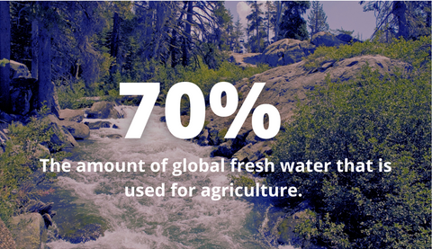 70% of global fresh waster is used for agriculture