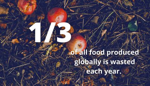 1/3 of all food produced globally is wasted each year