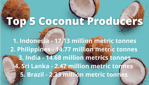 Top 5 coconut producers in the world