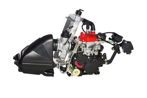 ROTAX FR125 SENIOR MAX ENGINE - EVO