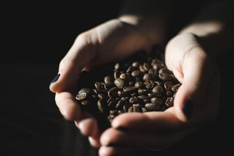 Cupped hand holding roasted coffee beans.