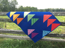 Load image into Gallery viewer, Flocks of Colour and Mini Flocks Pattern Bundle by Penny Spool Quilts. Flocks of Colour baby quilt with rainbow geese on dark blue background, on rail fence in a field