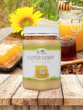 Clover Honey (0.5kg) - BeWell Indonesia