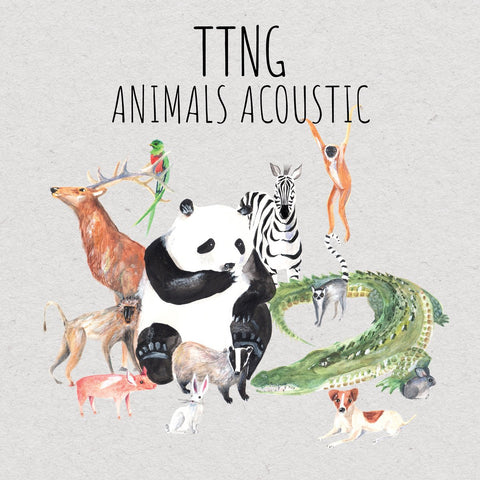 TTNG - Animals Acoustic - LP