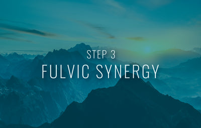Let's take your progress to the next level! - Fulvic Synergy