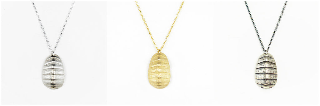 Chiton Shell Pendant Necklaces