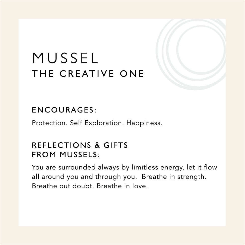 Card describing the symbolism and healing qualities of Mussel Jewelry including a mini meditation