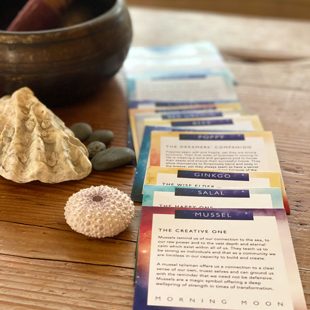 Warm feeling photo of Morning Moon's Elemental Inspiration Deck. Richly colourful cards spread out invitingly beside seashells and singing bowl