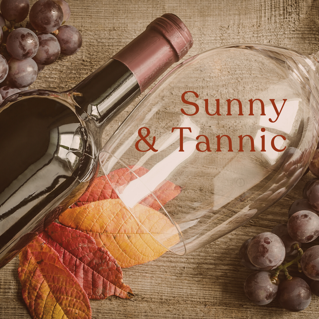 Red Discovery Selection: Sunny & Tannic