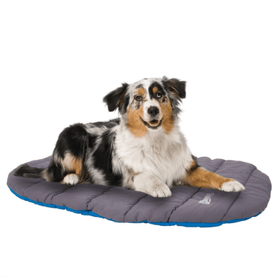 Travel Bed For Dogs - Pets 5th Avenue