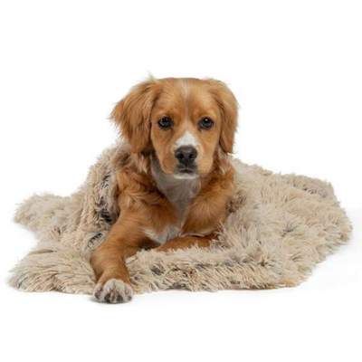 Calming Shag Dog & Cat Throw Blanket - Taupe - Pets 5th Avenue