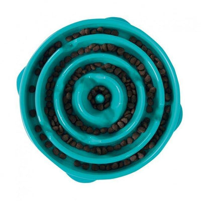 Fun Feeder Slo-Bowl Large in Teal - Pets 5th Avenue