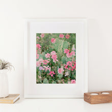 Load image into Gallery viewer, Pink Haze Double Exposure Cactus Flowers 8x10 Art Print