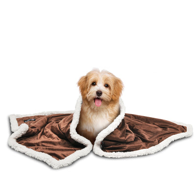 Pet Dog Sherpa Blanket for Couch Sofa Doggy Bed