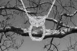 Sterling Silver Diamond Owl Pendant-Necklace on an 18inch Chain $ 49.95