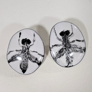 Oval fly post earrings