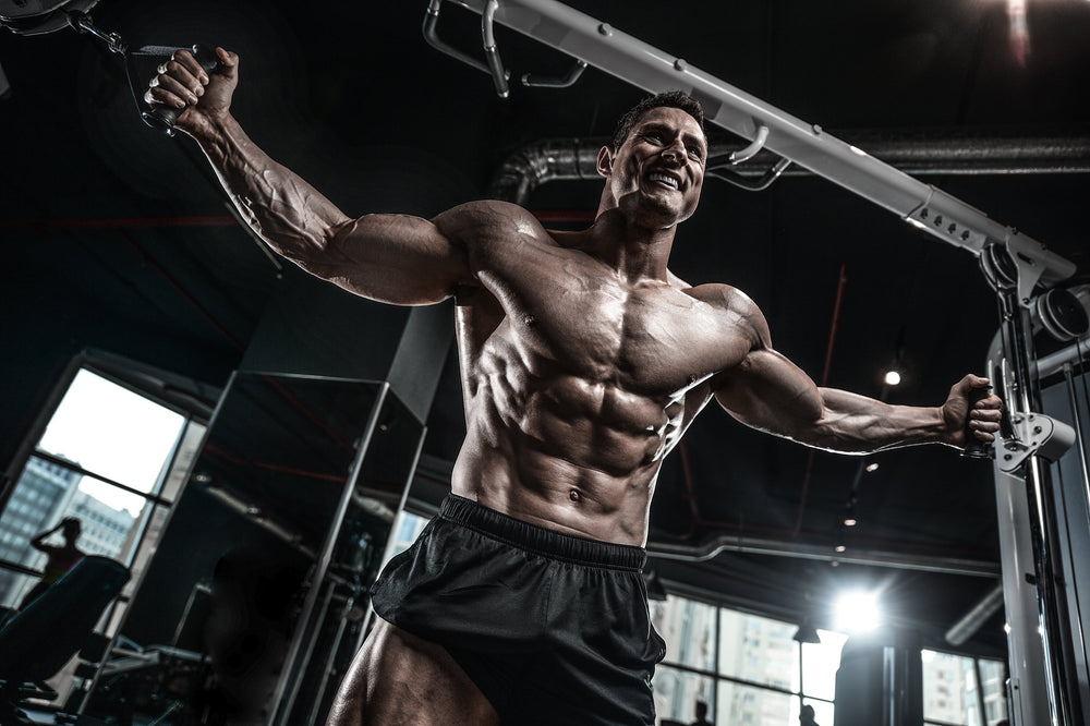 5 Simple (But Important) Things To Remember About Fat Loss SARMs