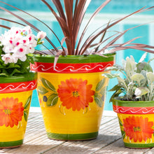"Load image into Gallery viewer, Olivar Planter - 12""W x 11""H"