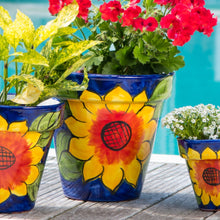 "Load image into Gallery viewer, Sunflower Planter - 12""W x 11""H"