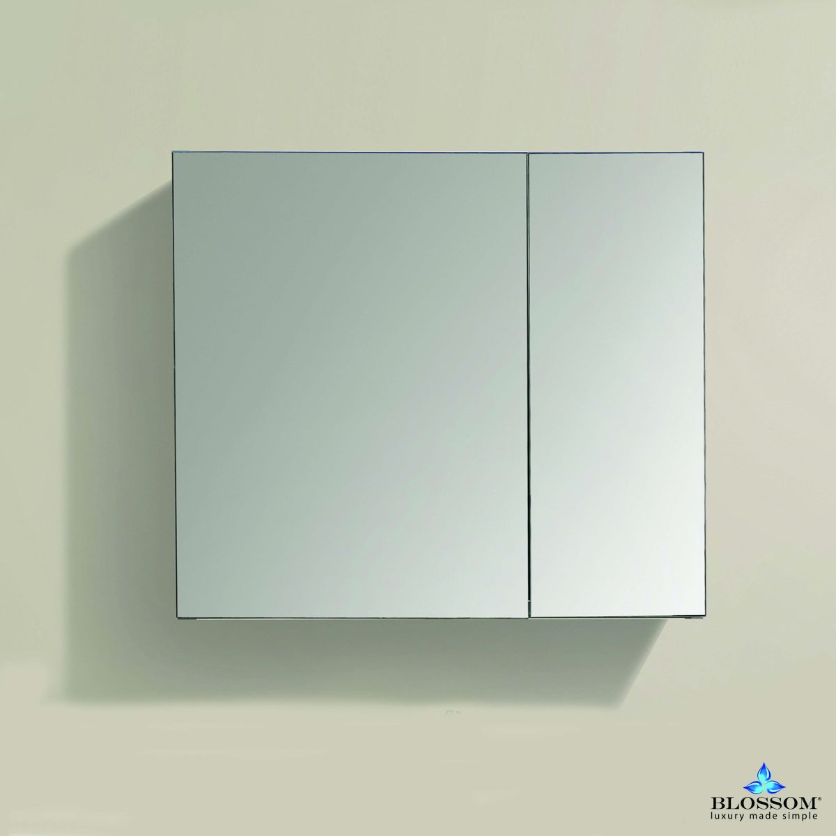30″ Aluminum Medicine Cabinet with Mirror – MC7 3026