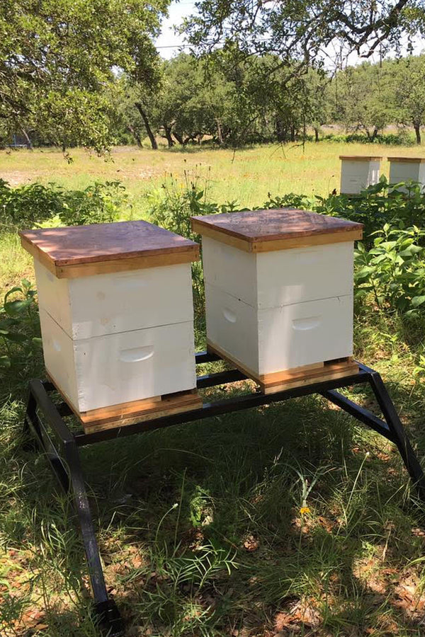 2-Hive Apiary Stand (On back order)